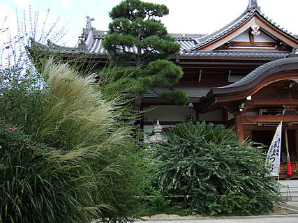 東光院 萩の寺の境内